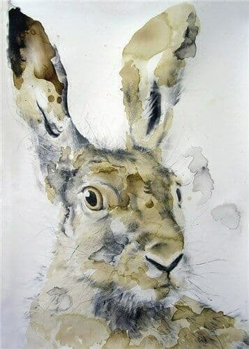 Head of a Hare   - Fine Art Blank Greeting